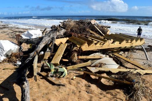 beach-debris-2864496_1920